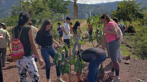 Portal Piedecuesta inició Plan de Compensación Ambiental