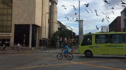 Metrolínea ajustará su operación por temporada vacacional