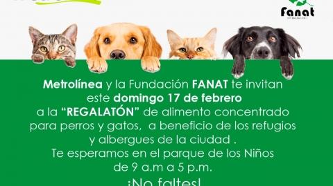 """Metrolínea y la Fundación FANAT, te invitan a la """"regalatón"""" de alimentos para refugios de animales"""